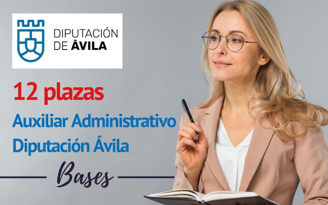 Bases convocatoria 12 plazas de Auxiliar Administrativo de la Diputación Provincial de Ávila